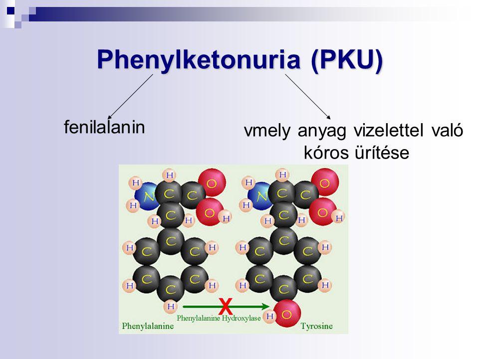 Phenylketonuria (PKU) vmely anyag vizelettel való kóros ürítése fenilalanin