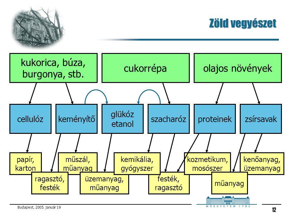 Budapest, 2005. január 19 12 kukorica, búza, burgonya, stb. Zöld vegyészet proteinekszacharózzsírsavakkeményítőcellulóz glükóz etanol olajos növényekc