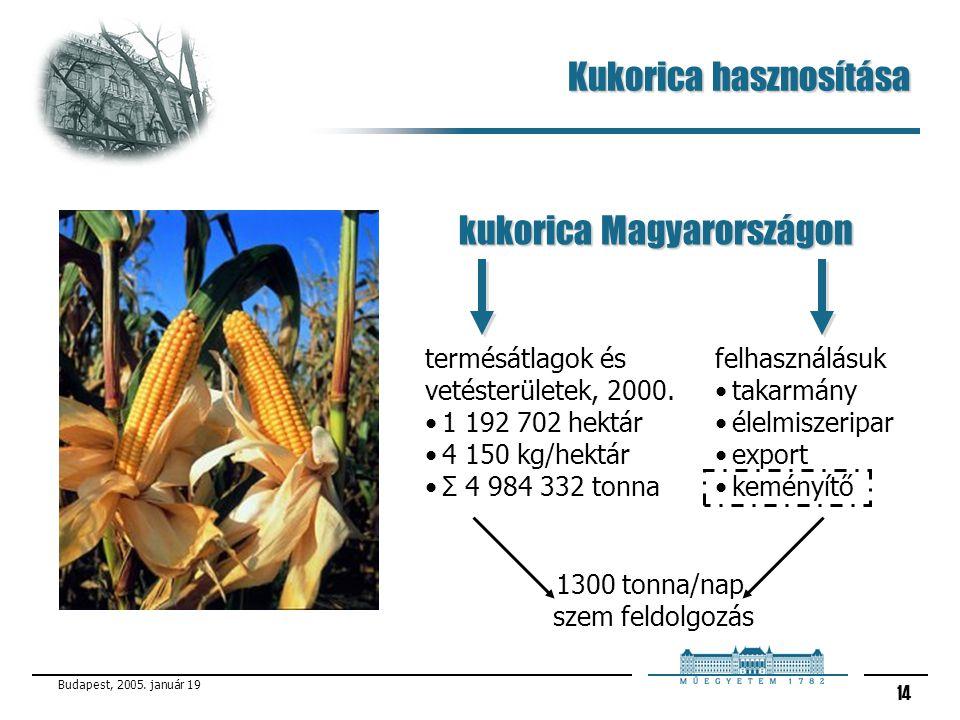 Budapest, 2005. január 19 14 Kukorica hasznosítása kukorica Magyarországon termésátlagok és vetésterületek, 2000. 1 192 702 hektár 4 150 kg/hektár Σ 4