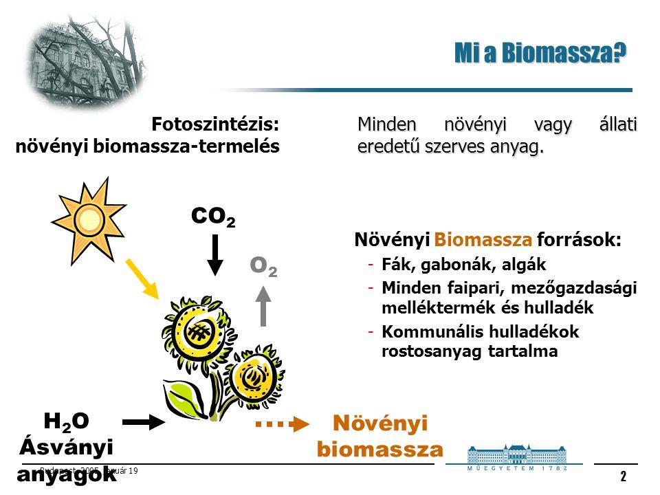 Budapest, 2005. január 19 2 Mi a Biomassza? Minden növényi vagy állati eredetű szerves anyag. Növényi Biomassza források: -Fák, gabonák, algák -Minden