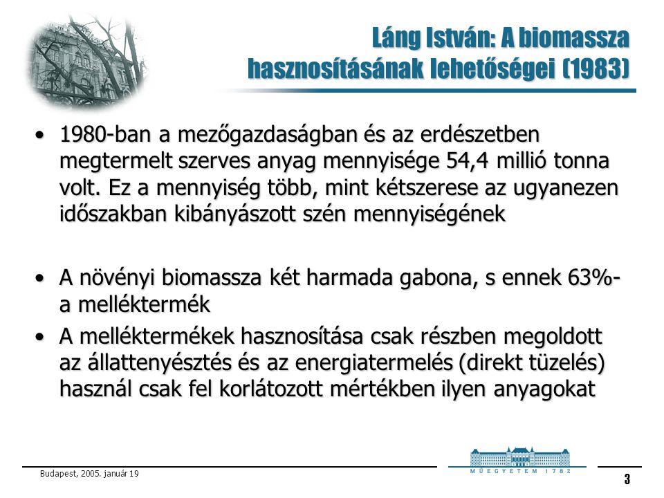 Budapest, 2005. január 19 3 Láng István: A biomassza hasznosításának lehetőségei (1983) 1980-ban a mezőgazdaságban és az erdészetben megtermelt szerve