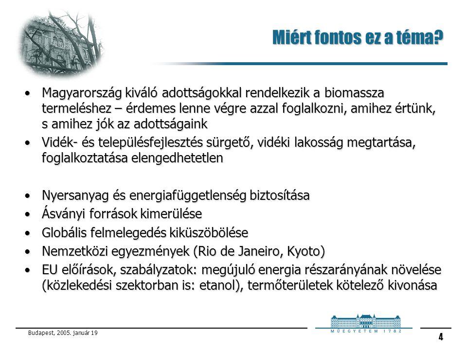 Budapest, 2005. január 19 4 Miért fontos ez a téma? Magyarország kiváló adottságokkal rendelkezik a biomassza termeléshez – érdemes lenne végre azzal