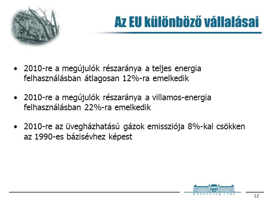 12 Az EU különböző vállalásai 2010-re a megújulók részaránya a teljes energia felhasználásban átlagosan 12%-ra emelkedik 2010-re a megújulók részarány