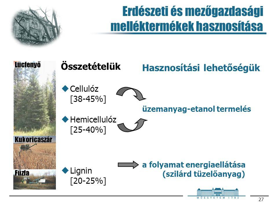 27 Erdészeti és mezőgazdasági melléktermékek hasznosítása Hasznosítási lehetőségük a folyamat energiaellátása (szilárd tüzelőanyag) üzemanyag-etanol t