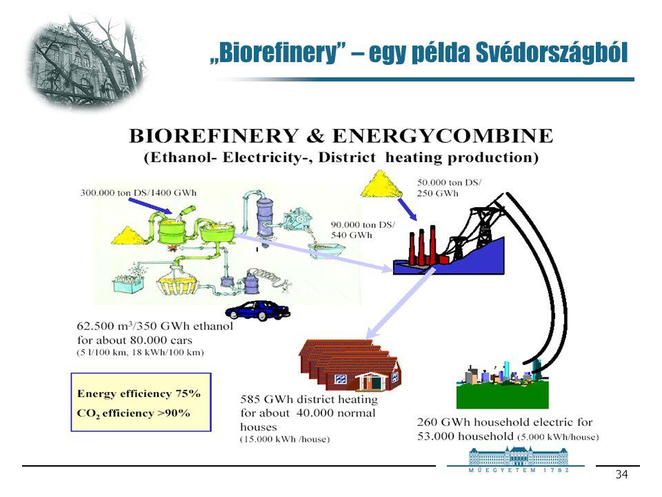 """34 """"Biorefinery"""" – egy példa Svédországból"""
