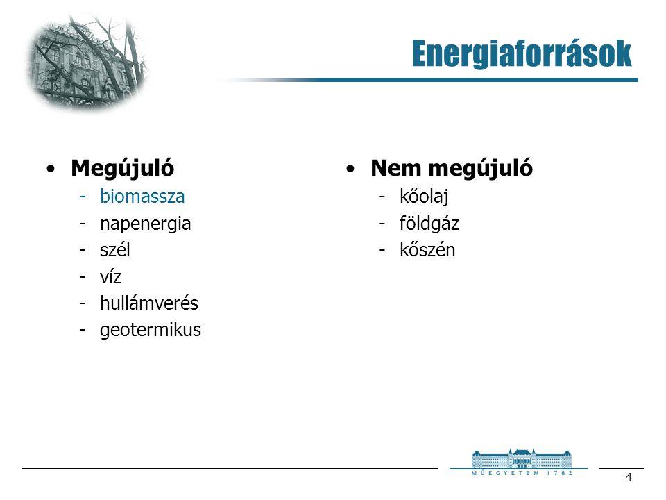 4 Energiaforrások Megújuló biomassza napenergia szél víz hullámverés geotermikus Nem megújuló kőolaj földgáz kőszén