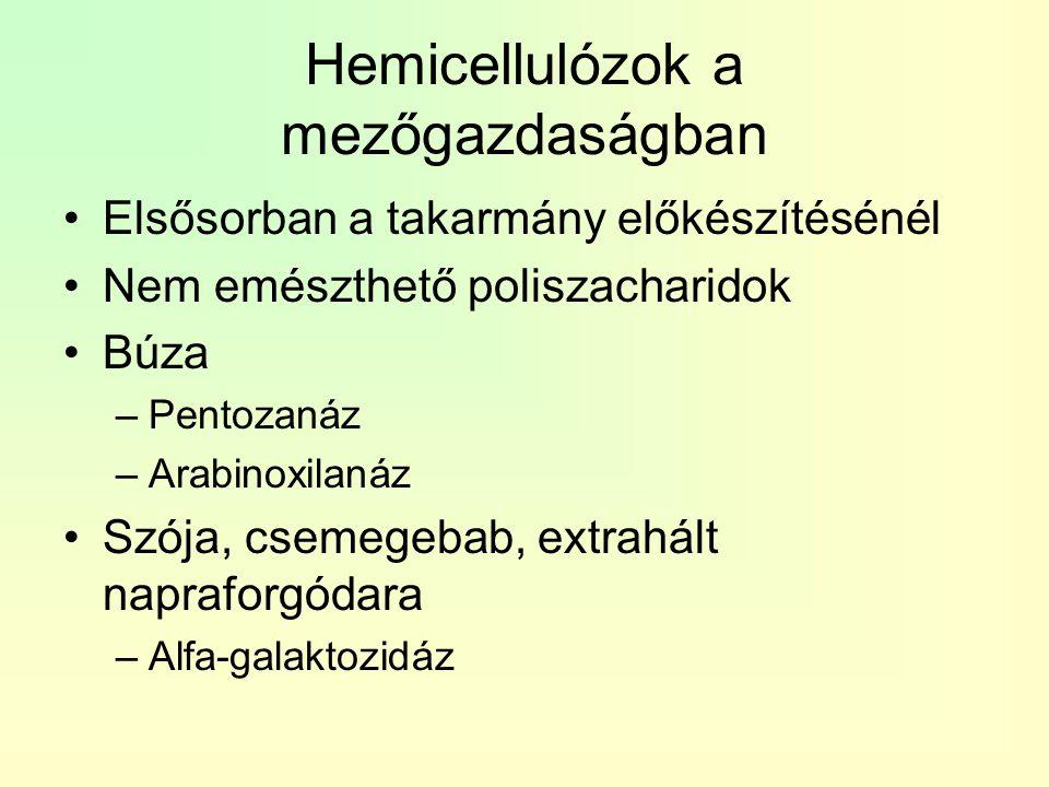 Hemicellulózok a mezőgazdaságban Elsősorban a takarmány előkészítésénél Nem emészthető poliszacharidok Búza –Pentozanáz –Arabinoxilanáz Szója, csemege
