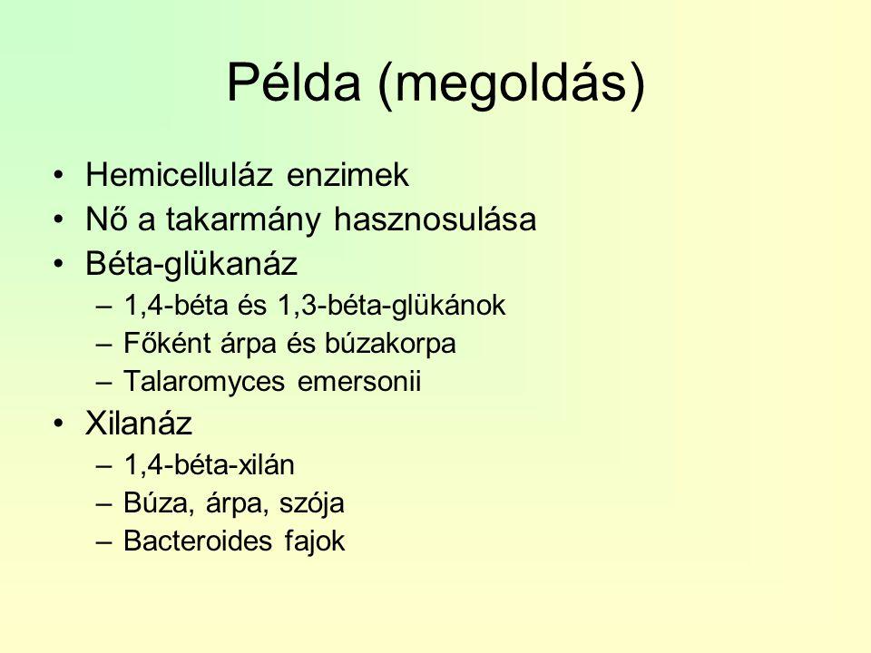 Példa (megoldás) Hemicelluláz enzimek Nő a takarmány hasznosulása Béta-glükanáz –1,4-béta és 1,3-béta-glükánok –Főként árpa és búzakorpa –Talaromyces
