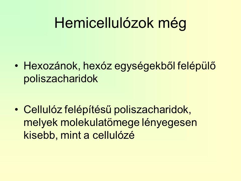 Hemicellulózok még Hexozánok, hexóz egységekből felépülő poliszacharidok Cellulóz felépítésű poliszacharidok, melyek molekulatömege lényegesen kisebb,
