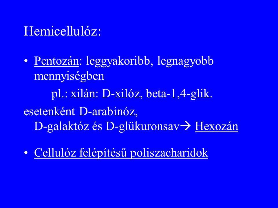 Hemicellulóz: Pentozán: leggyakoribb, legnagyobb mennyiségben pl.: xilán: D-xilóz, beta-1,4-glik. esetenként D-arabinóz, D-galaktóz és D-glükuronsav 