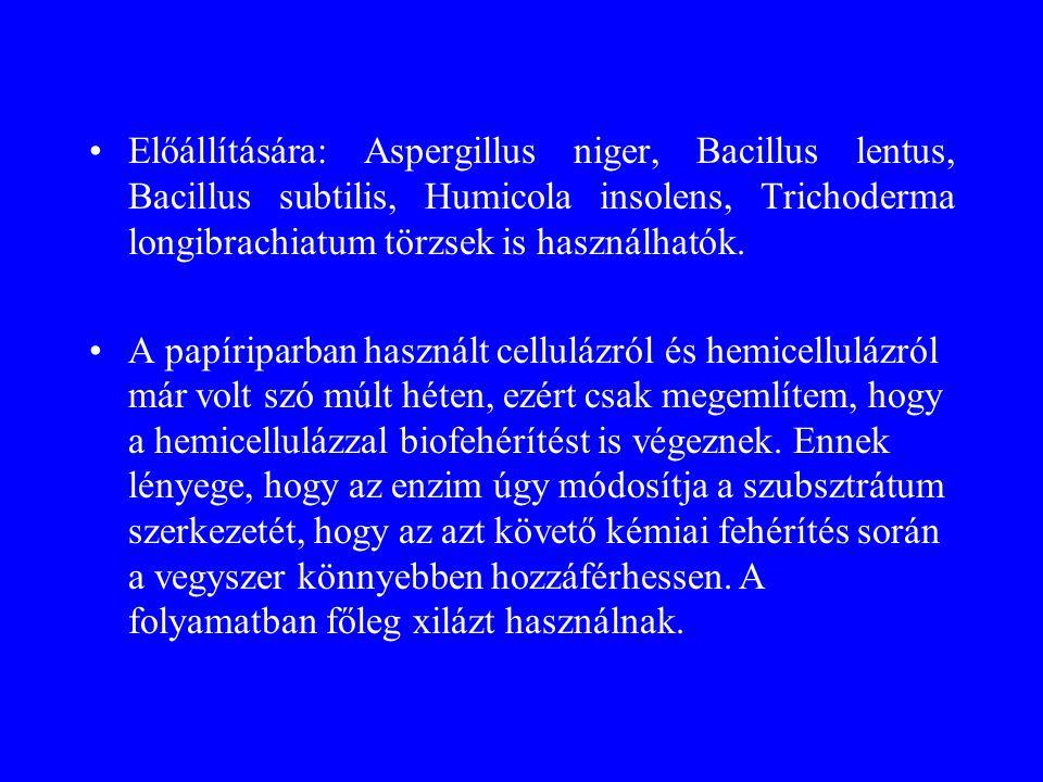 Előállítására: Aspergillus niger, Bacillus lentus, Bacillus subtilis, Humicola insolens, Trichoderma longibrachiatum törzsek is használhatók. A papíri
