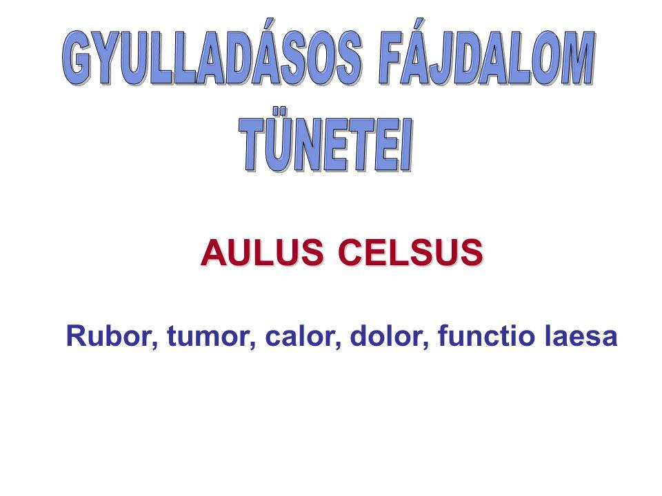 AULUS CELSUS Rubor, tumor, calor, dolor, functio laesa