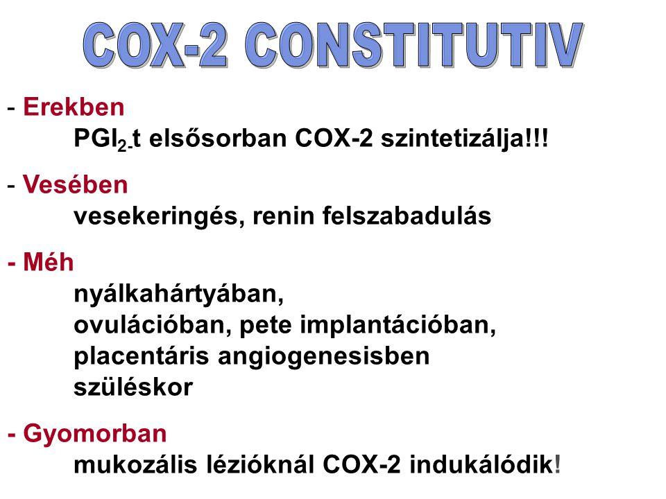 - Erekben PGI 2- t elsősorban COX-2 szintetizálja!!! - Vesében vesekeringés, renin felszabadulás - Méh nyálkahártyában, ovulációban, pete implantációb