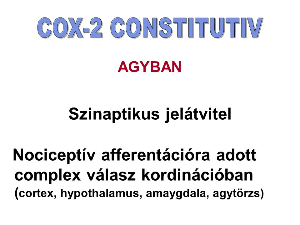 AGYBAN Szinaptikus jelátvitel Nociceptív afferentációra adott complex válasz kordinációban ( cortex, hypothalamus, amaygdala, agytörzs)