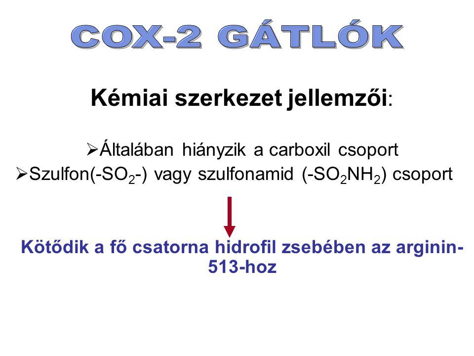 Kémiai szerkezet jellemzői :  Általában hiányzik a carboxil csoport  Szulfon(-SO 2 -) vagy szulfonamid (-SO 2 NH 2 ) csoport Kötődik a fő csatorna hidrofil zsebében az arginin- 513-hoz