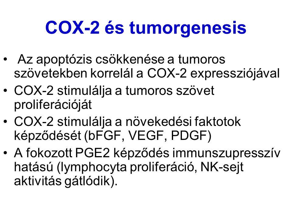 COX-2 és tumorgenesis Az apoptózis csökkenése a tumoros szövetekben korrelál a COX-2 expressziójával COX-2 stimulálja a tumoros szövet proliferációját COX-2 stimulálja a növekedési faktotok képződését (bFGF, VEGF, PDGF) A fokozott PGE2 képződés immunszupresszív hatású (lymphocyta proliferáció, NK-sejt aktivitás gátlódik).