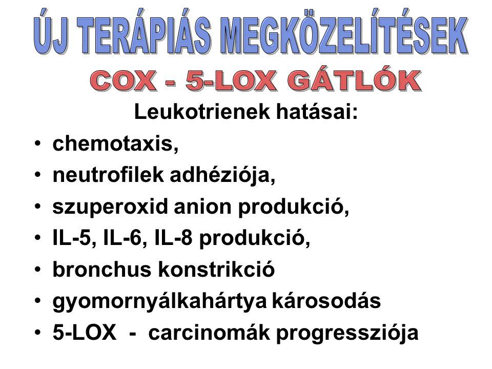 Leukotrienek hatásai: chemotaxis, neutrofilek adhéziója, szuperoxid anion produkció, IL-5, IL-6, IL-8 produkció, bronchus konstrikció gyomornyálkahártya károsodás 5-LOX - carcinomák progressziója