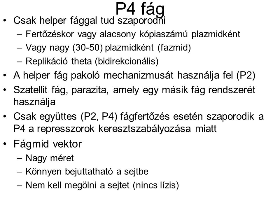 P4 fág Csak helper fággal tud szaporodni –Fertőzéskor vagy alacsony kópiaszámú plazmidként –Vagy nagy (30-50) plazmidként (fazmid) –Replikáció theta (bidirekcionális) A helper fág pakoló mechanizmusát használja fel (P2) Szatellit fág, parazita, amely egy másik fág rendszerét használja Csak együttes (P2, P4) fágfertőzés esetén szaporodik a P4 a represszorok keresztszabályozása miatt Fágmid vektor –Nagy méret –Könnyen bejuttatható a sejtbe –Nem kell megölni a sejtet (nincs lízis)