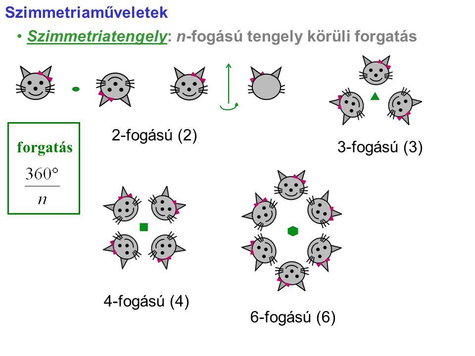 Szimmetriatengely: n-fogású tengely körüli forgatás 3-fogású (3) 4-fogású (4) 6-fogású (6) 2-fogású (2) Szimmetriaműveletek forgatás