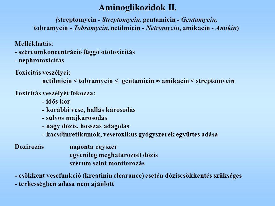 Mellékhatás: - széréumkoncentráció függő ototoxicitás - nephrotoxicitás Toxicitás veszélyei: netilmicin < tobramycin  gentamicin  amikacin < strepto