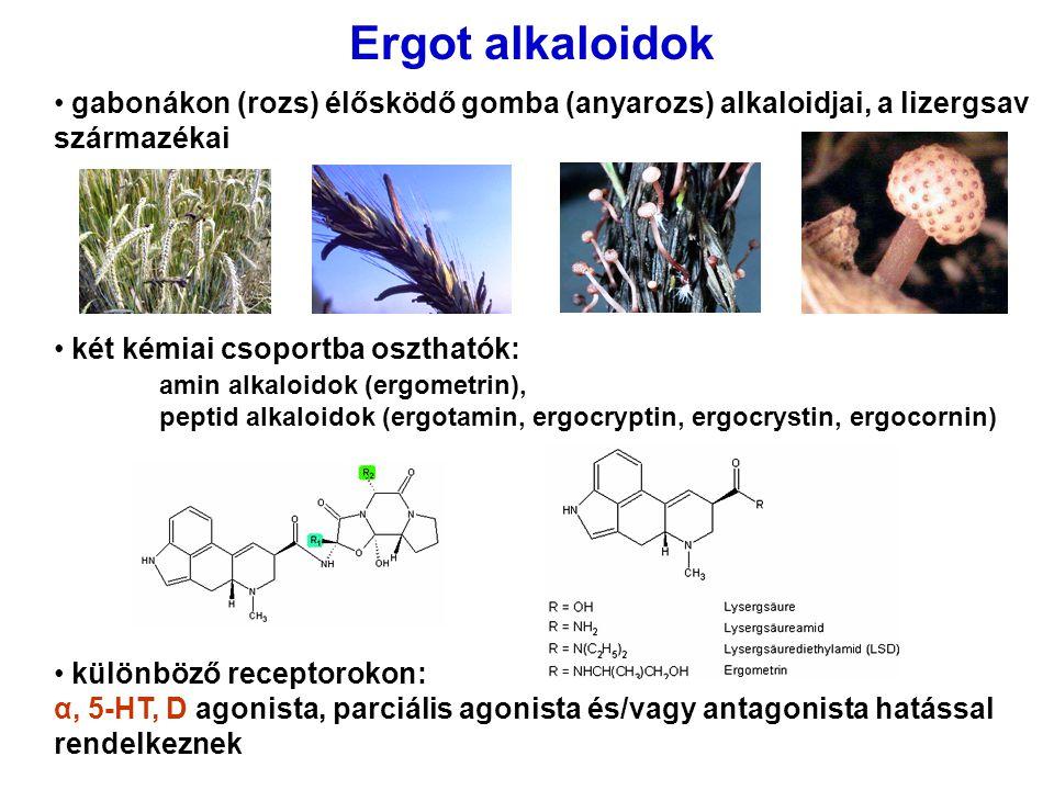 Ergot alkaloidok gabonákon (rozs) élősködő gomba (anyarozs) alkaloidjai, a lizergsav származékai két kémiai csoportba oszthatók: amin alkaloidok (ergo