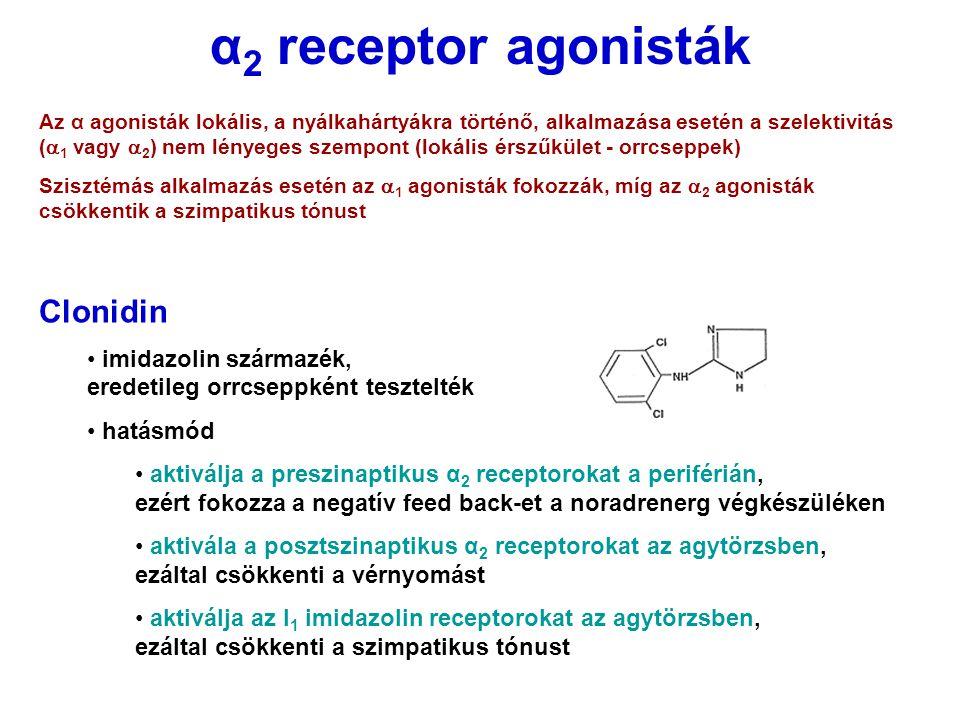 α 2 receptor agonisták Αz α agonisták lokális, a nyálkahártyákra történő, alkalmazása esetén a szelektivitás (  1 vagy  2 ) nem lényeges szempont (l