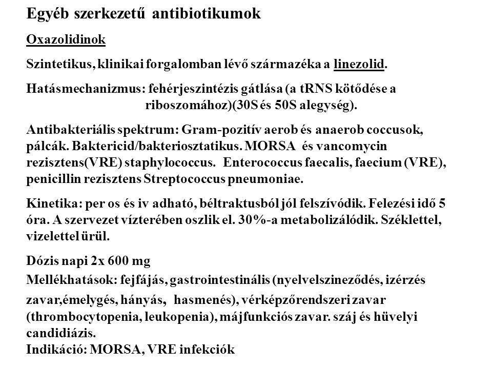 Egyéb szerkezetű antibiotikumok Oxazolidinok Szintetikus, klinikai forgalomban lévő származéka a linezolid. Hatásmechanizmus: fehérjeszintézis gátlása
