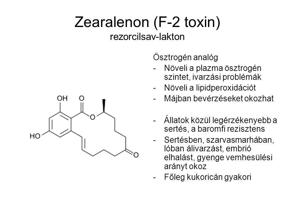 Zearalenon (F-2 toxin) rezorcilsav-lakton Ösztrogén analóg -Növeli a plazma ösztrogén szintet, ivarzási problémák -Növeli a lipidperoxidációt -Májban
