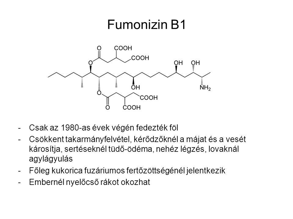 Fumonizin B1 -Csak az 1980-as évek végén fedezték föl -Csökkent takarmányfelvétel, kérődzőknél a májat és a vesét károsítja, sertéseknél tüdő-ödéma, n