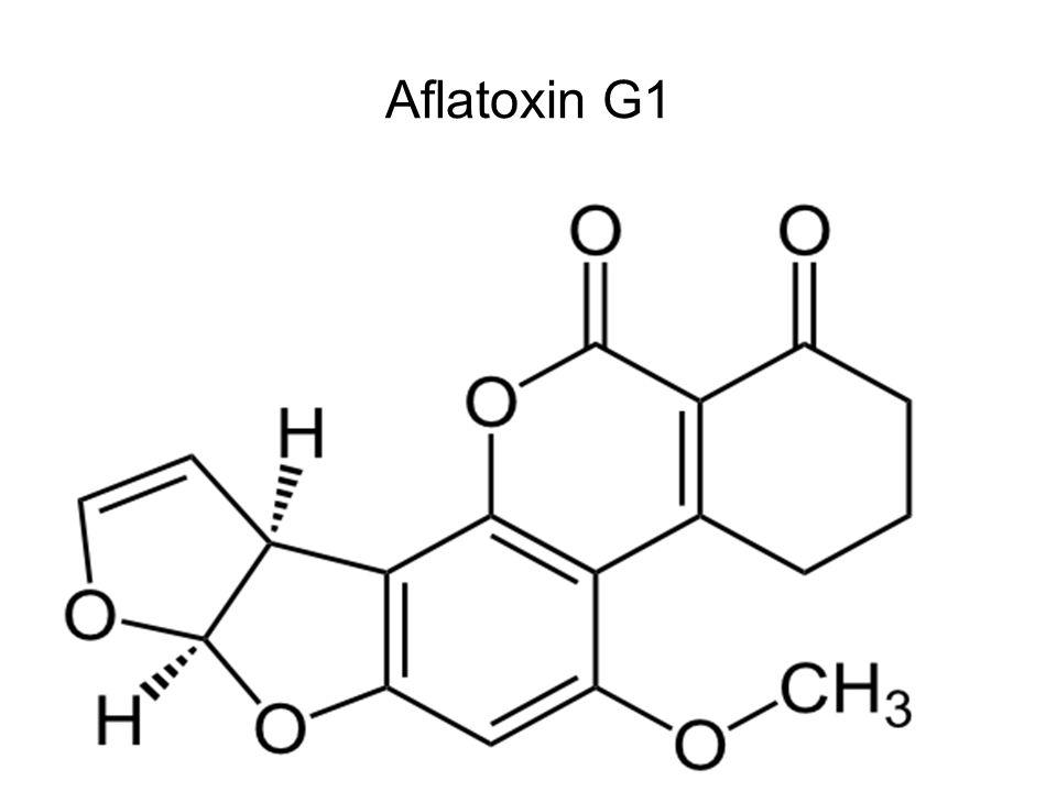 Dezoxinivalenol (DON, vomitoxin) -Takarmány visszautasítása, hányás, bélnyálkahártya irritáció -Immunszuppresszív hatás -Termelődése mindenféle gabonán magasabb hőmérsékleten, párás időben -Kevésbé toxikus, mint a T-2, viszont sokkal gyakoribb