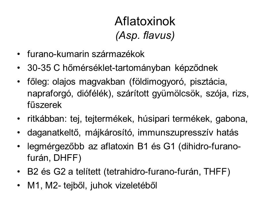 Aflatoxinok (Asp. flavus) furano-kumarin származékok 30-35 C hőmérséklet-tartományban képződnek főleg: olajos magvakban (földimogyoró, pisztácia, napr