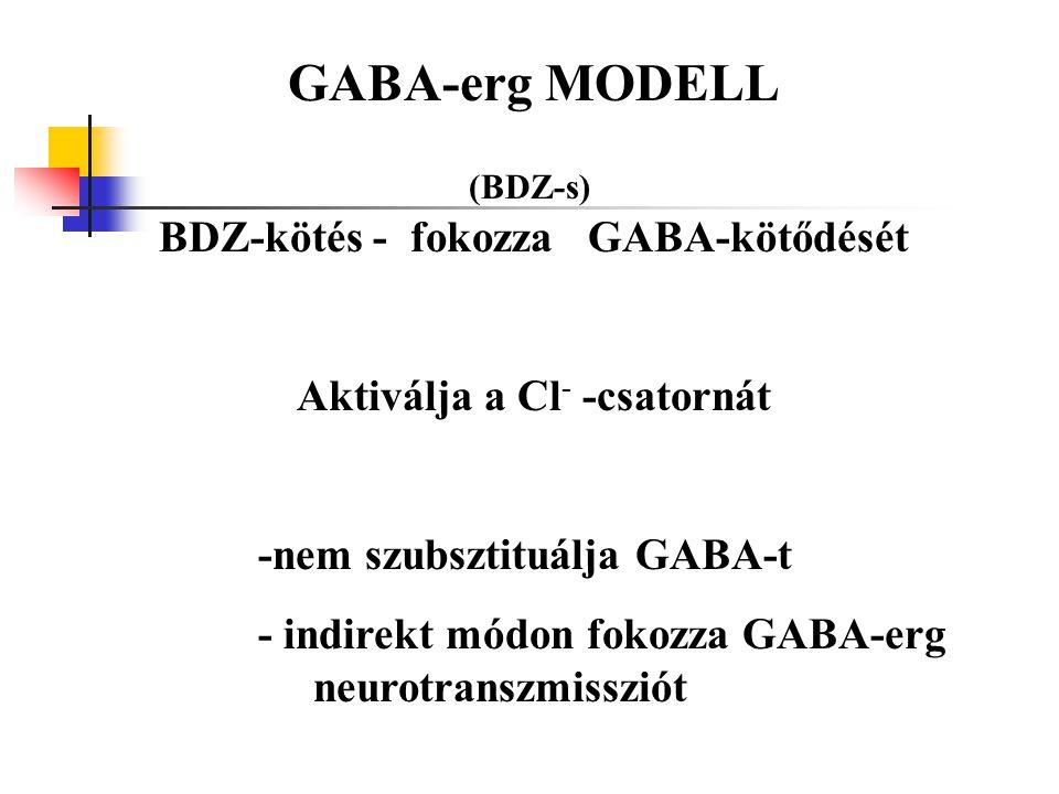 GABA-erg MODELL (BDZ-s) BDZ-kötés - fokozza GABA-kötődését Aktiválja a Cl - -csatornát -nem szubsztituálja GABA-t - indirekt módon fokozza GABA-erg ne