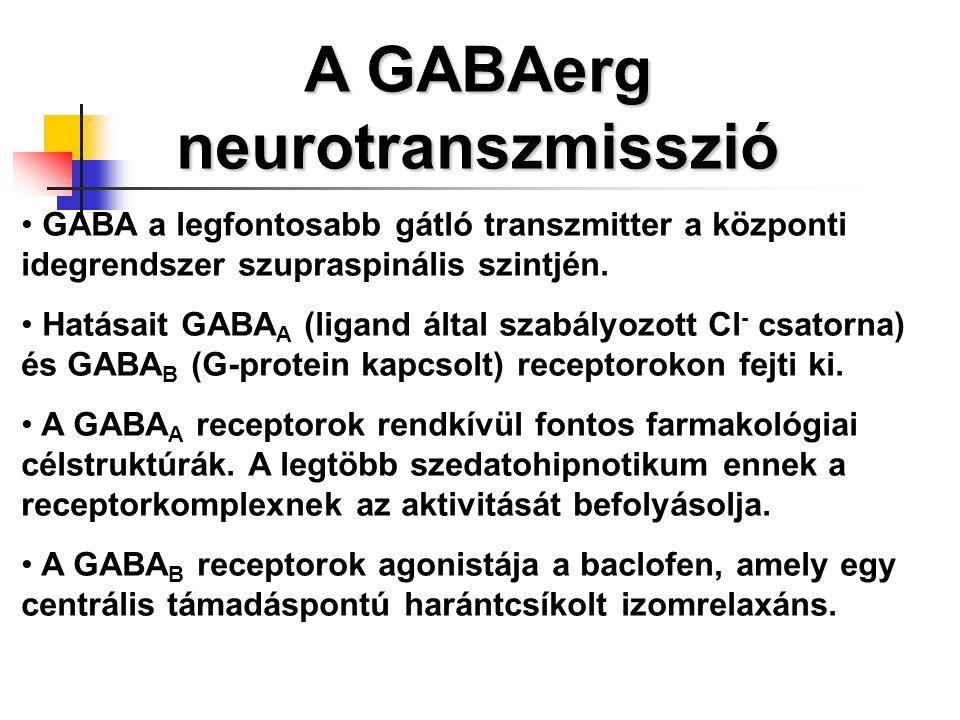 A GABAerg neurotranszmisszió GABA a legfontosabb gátló transzmitter a központi idegrendszer szupraspinális szintjén. Hatásait GABA A (ligand által sza