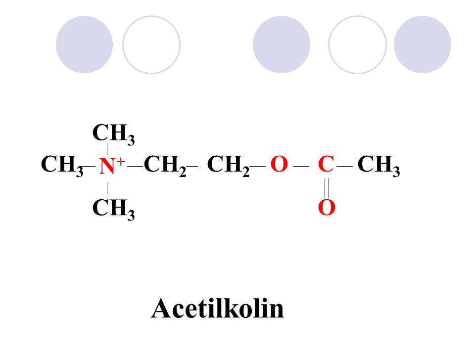N+N+ CH 3 CH 2 OC O Acetilkolin N+N+ CH 3 CHCH 2 OC O Methacholine CH 3
