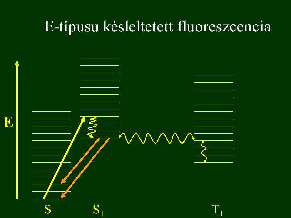 E-típusu késleltetett fluoreszcencia E SS1S1 T1T1