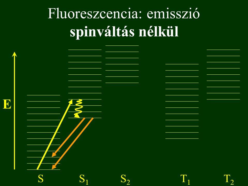 Fluoreszcencia: emisszió spinváltás nélkül E SS1S1 S2S2 T1T1 T2T2