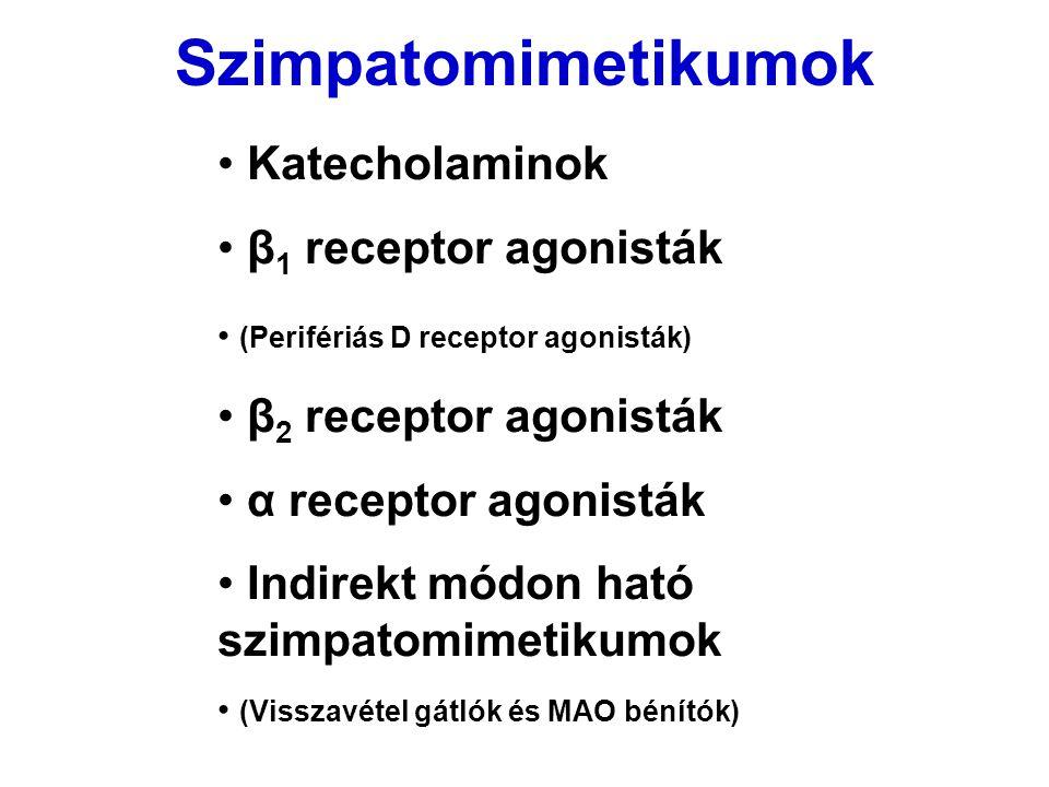 Szimpatomimetikumok Katecholaminok β 1 receptor agonisták (Perifériás D receptor agonisták) β 2 receptor agonisták α receptor agonisták Indirekt módon