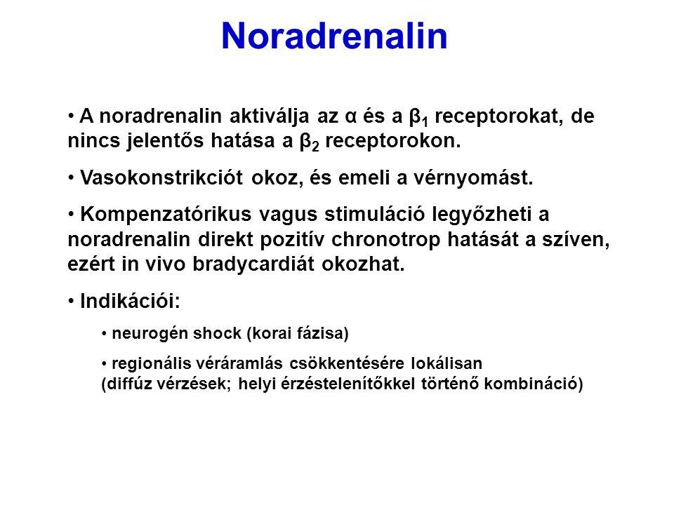 Noradrenalin A noradrenalin aktiválja az α és a β 1 receptorokat, de nincs jelentős hatása a β 2 receptorokon. Vasokonstrikciót okoz, és emeli a vérny