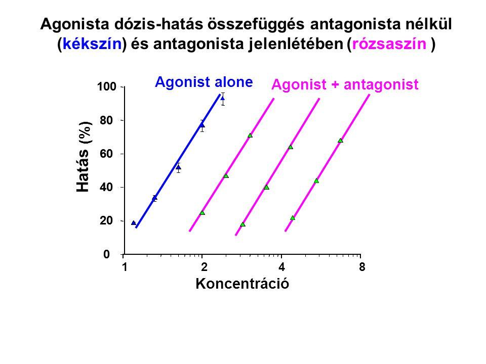 1 0 20 40 60 80 100 (%) Agonist + antagonist 0 20 40 60 80 100 Koncentráció Hatás Agonist alone Agonista dózis-hatás összefüggés antagonista nélkül (k