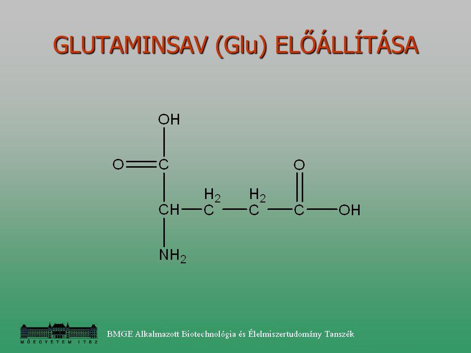 GLUTAMINSAV (Glu) ELŐÁLLÍTÁSA