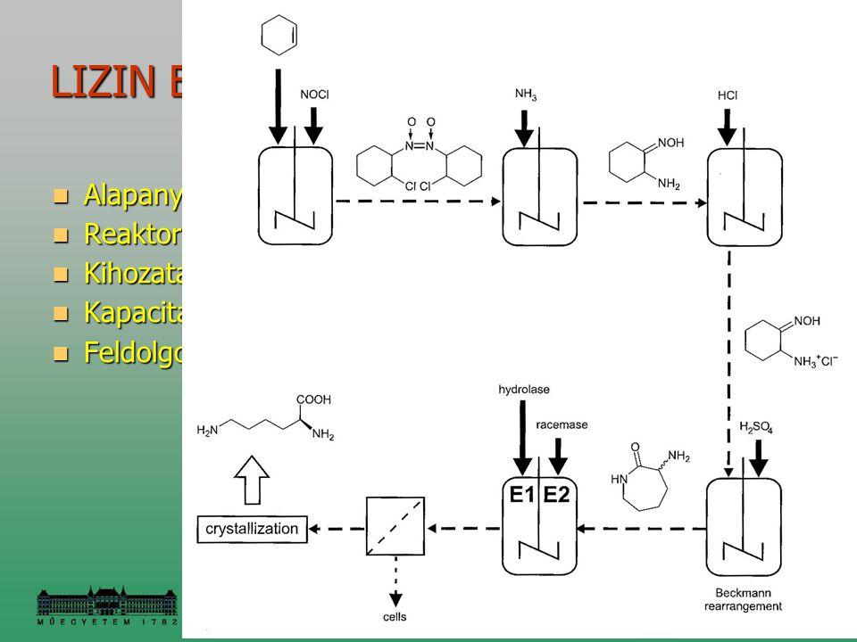 LIZIN ELŐÁLLÍTÁSA KAPROLAKTÁMBÓL Alapanyag: ciklohexén + NOCl Alapanyag: ciklohexén + NOCl Reaktor: batch, 25 óra Reaktor: batch, 25 óra Kihozatal: 99