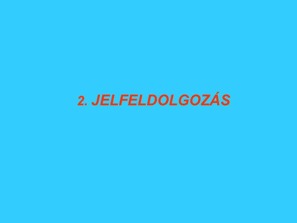2. JELFELDOLGOZÁS