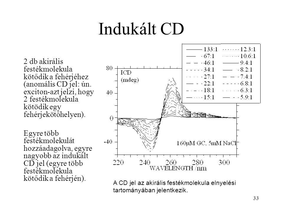 33 Indukált CD 2 db akirális festékmolekula kötődik a fehérjéhez (anomális CD jel: ún. exciton-azt jelzi, hogy 2 festékmolekula kötödik egy fehérjeköt