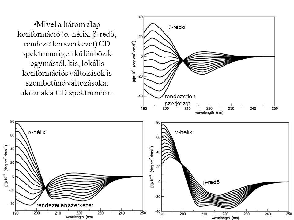 39 rendezetlen szerkezet  -hélix  -redő rendezetlen szerkezet  -redő Mivel a három alap konformáció (  -hélix,  -redő, rendezetlen szerkezet) CD spektruma igen különbözik egymástól, kis, lokális konformációs változások is szembetűnő változásokat okoznak a CD spektrumban.