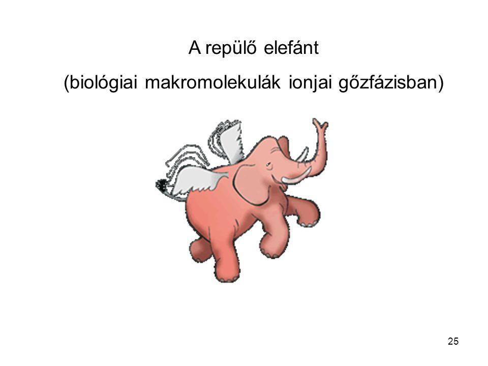 A repülő elefánt (biológiai makromolekulák ionjai gőzfázisban) 25