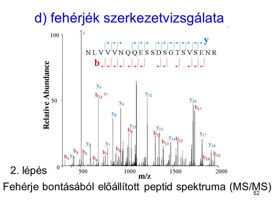 d) fehérjék szerkezetvizsgálata Fehérje bontásából előállított peptid spektruma (MS/MS) 2. lépés 52