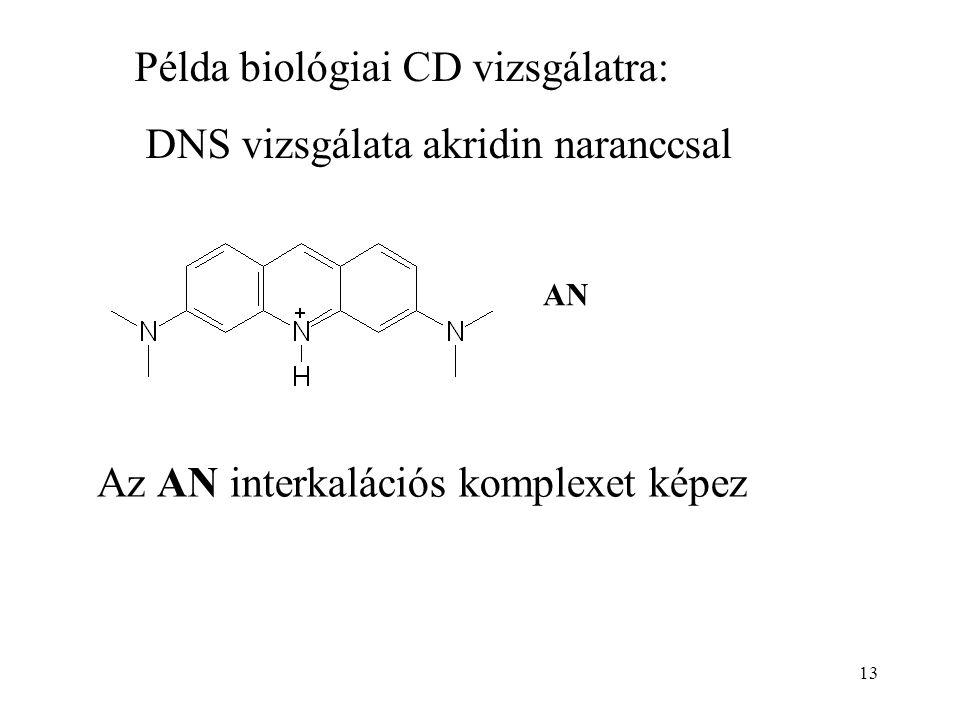 13 Példa biológiai CD vizsgálatra: DNS vizsgálata akridin naranccsal AN Az AN interkalációs komplexet képez