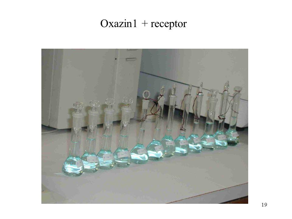 19 Oxazin1 + receptor