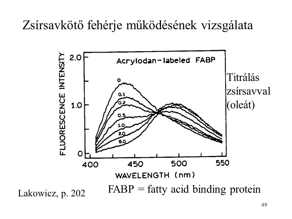 49 Zsírsavkötő fehérje működésének vizsgálata Lakowicz, p. 202 FABP = fatty acid binding protein Titrálás zsírsavval (oleát)