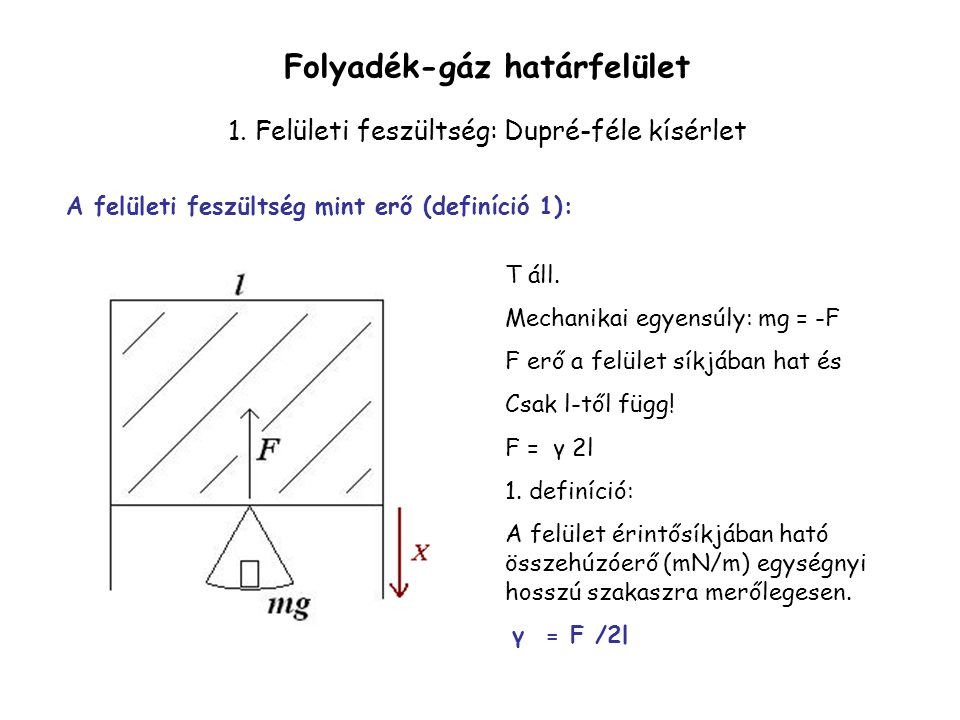 T áll. Mechanikai egyensúly: mg = -F F erő a felület síkjában hat és Csak l-től függ! F = γ 2l 1. definíció: A felület érintősíkjában ható összehúzóer